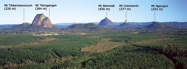 beerburrum-lookout