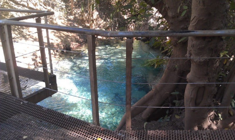 katherine-hot-springs-boardwalk